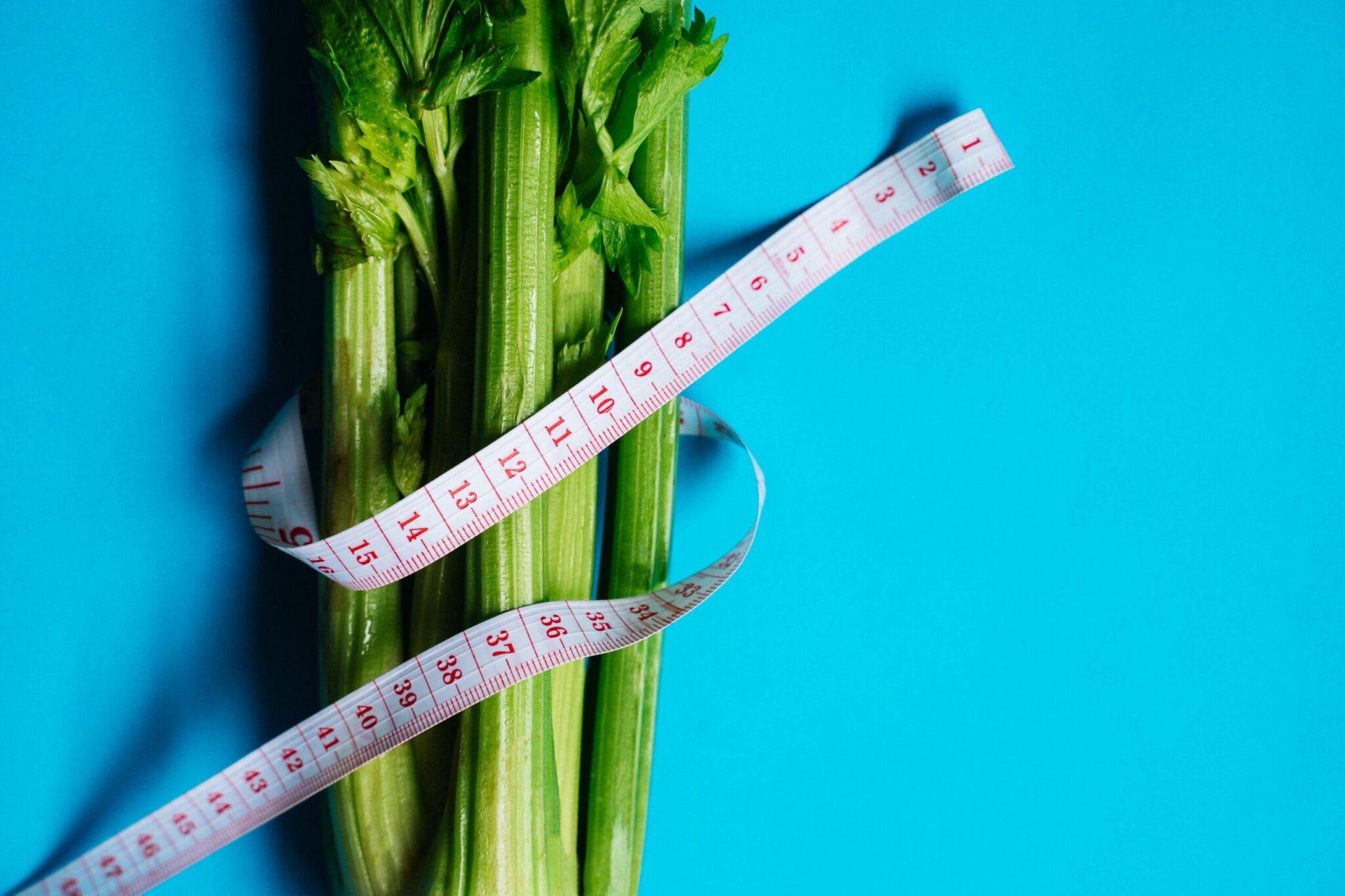 dieta dla otyłych