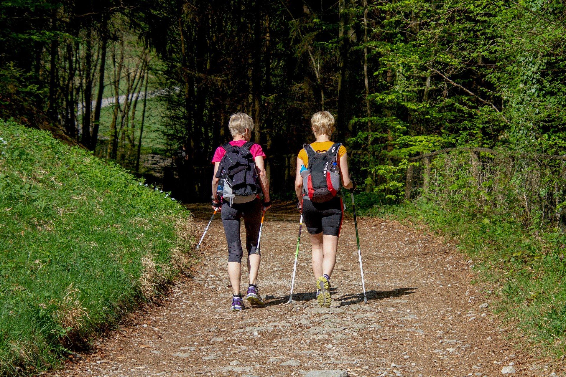 powrót do formy mo covid - nordic walking